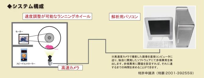 gait_system