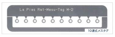 ra-p07