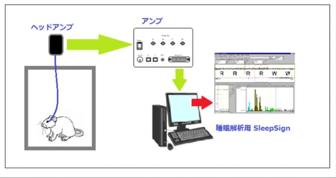 EEGEMG_system